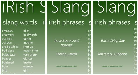 slang words and phrases top windows phone apps to help celebrate saint patrick s