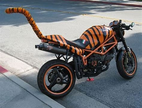 imagenes de motos unicas fotos de las motos m 225 s curiosas del mundo planeta curioso