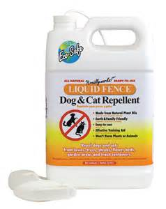 bed bug repellent effective bed bug repellent
