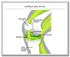 knieschmerzen beim treppen runter gehen knieschmerzen gr 252 nde ursachen was tun bei schmerzen im