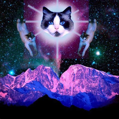 space cat wallpaper tumblr image gallery hipster cat in space