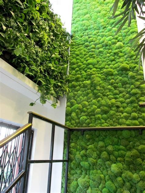 living wall and moss wall on staircase vertical garden