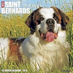 Barnard Calendar Bernards Dogbreed Gifts Bernard Calendars