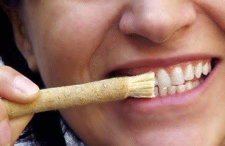 Untuk Pemutih Gigi 5 cara uh memutihkan gigi kuning dokter gigi