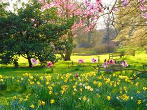 haltestelle englischer garten garden tours neverstoptraveling