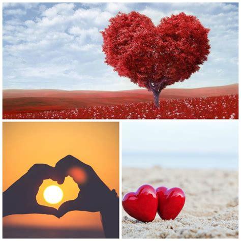 imagenes reflexivas y bonitas las mejores frases bonitas de amor para enamorados
