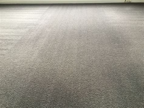 carpet and upholstery cleaning melbourne carpet cleaners hawthorn melbourne carpet vidalondon