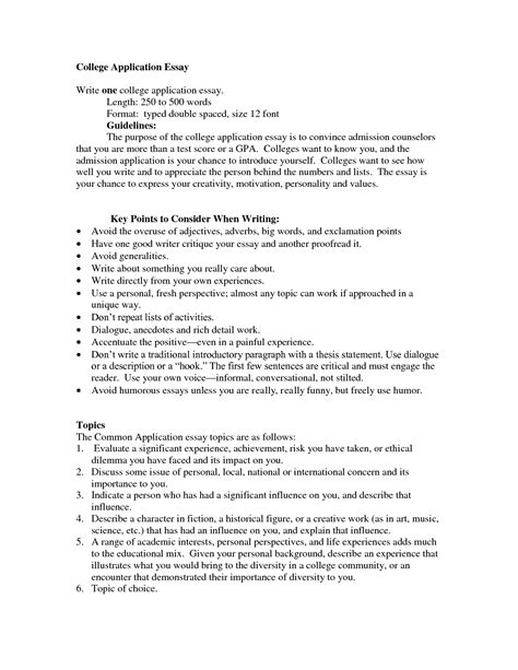 College Application Essay Outline Professional Writing Website College Essay Template