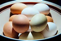 Egg Shelf Unrefrigerated by Here S Why American Stores Refrigerate Eggs While Some
