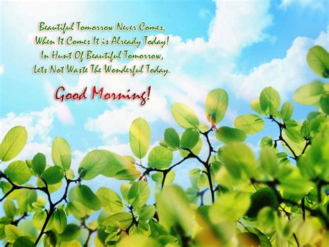 morning quotes pictures morning images allwishes in