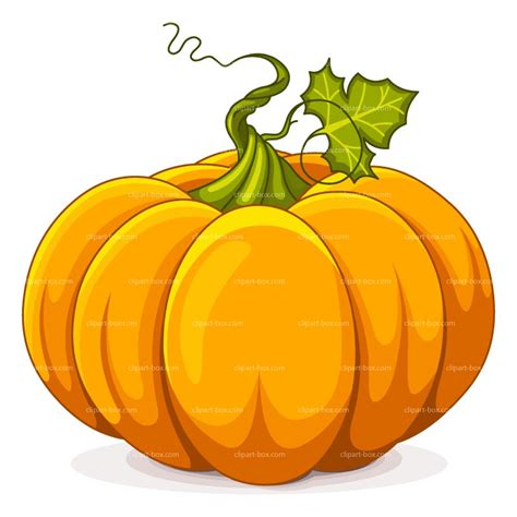 pumpkin clipart pumpkin clipart humanediteddir