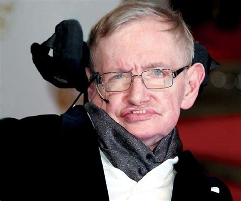 profile of stephen william hawking stephen hawking biography facts childhood family life