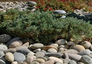 landscaping with river rock landscape guide