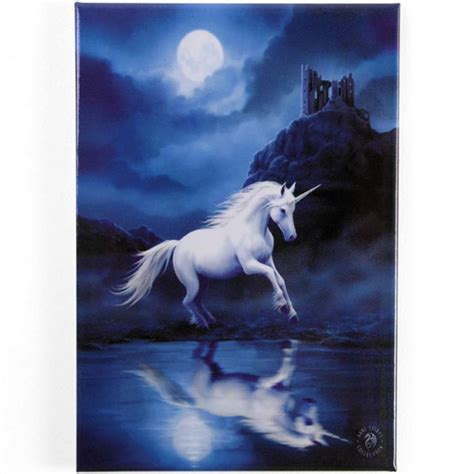 Gothic Home Decor Uk by Metal Fridge Magnets Anne Stokes Fantasy Mystical Dragon