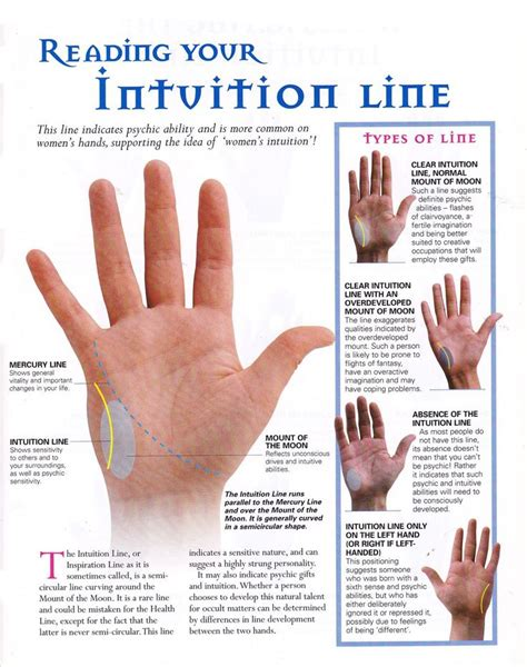 lines in palmistry reading major 17 best images about palmistry on index finger
