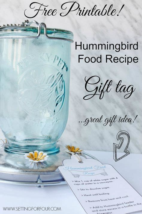 best 25 hummingbird food ideas on pinterest hummingbird