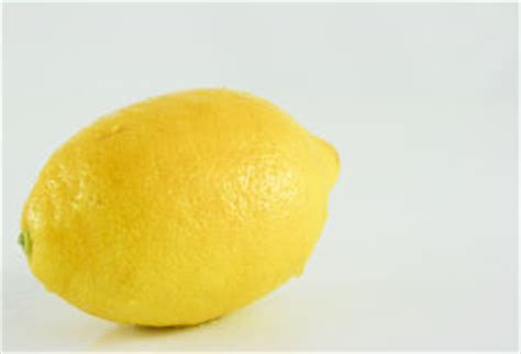 lemon zest substitute ilaria s perfect recipes