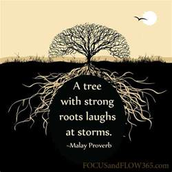 best 25 tree quotes ideas on pinterest quotes on fear