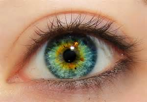 blue green eye color central heterochromia blue green search eye