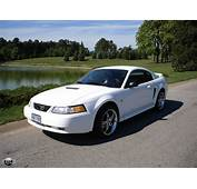 2000 Ford Mustang  Information And Photos MOMENTcar