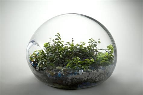 beautiful eco systems   fit   hand justds