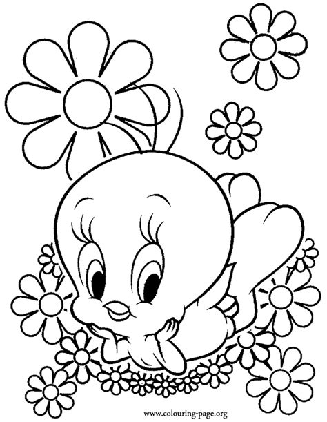beautiful flowers jumbo large print coloring book flowers large print easy designs for elderly seniors and adults to relieve easy coloring book for adults volume 1 books tweety tweety surrounded by beautiful flowers coloring page