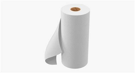 What To Make With Paper Towel Rolls - paper towel roll 3d max