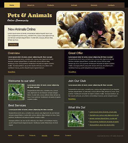 free flash templates for websites in html pets best website templates