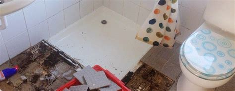 How To Fix A Leaking Shower Tray by Leaking Shower Tray And The Problems It Causes