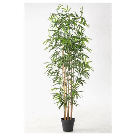 piante finte da interno piante finte da interno piante finte piante