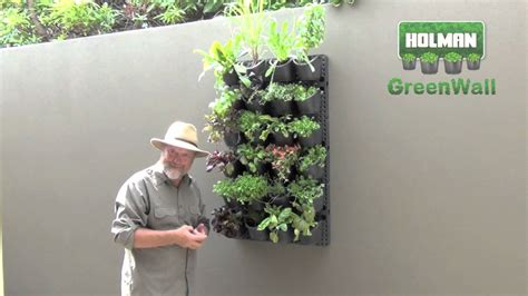 How To Make Vertical Garden Indoor Living Wall - holman greenwall creating a vertical or horizontal display youtube