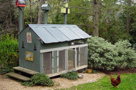 Backyard Chicken Coop For Sale Chicken Coops For Backyard Flocks Hgtv
