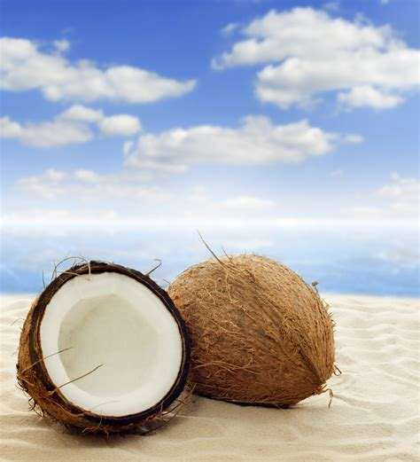 coconut skin coconut confessions of a cosmetologist