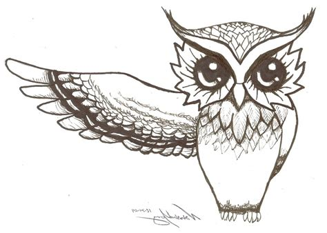 drawing of owl drawings www pixshark images galleries