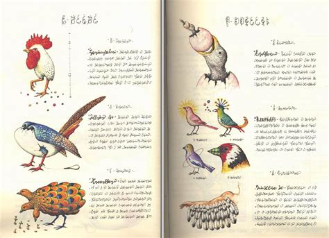codex seraphinianus codex seraphinianus the weirdest encyclopedia ever earthly mission