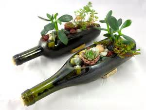 Wine Bottle Planter Diy by Wine Bottle Garden Succulent Complete Planter Kit One Kit