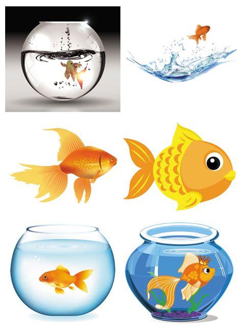 aquarium design eps goldfish in aquarium vector free stock vector art