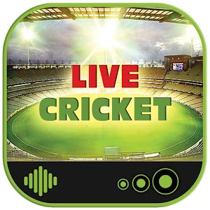 live cricket match on mobile live cricket matches app report on mobile