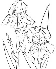 turn a picture into a coloring page turn photos into coloring pages az coloring pages
