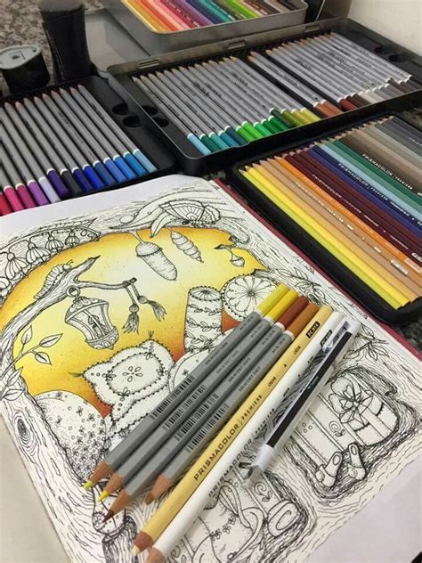 colored pencils for creative coloring books 389 best images about drawing on herons foxes