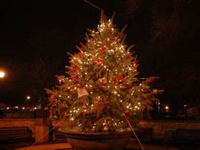 naperville park district seeks donation of holiday tree