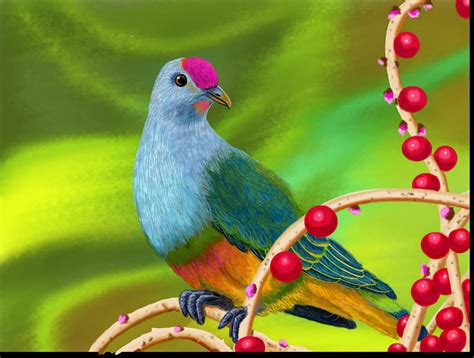 big colorful bird colorful bird and berries digital by susie lalonde