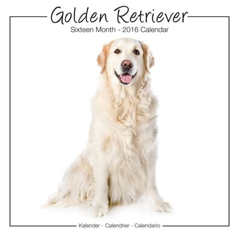 golden retriever gifts for golden retriever gifts golden retriever calendars