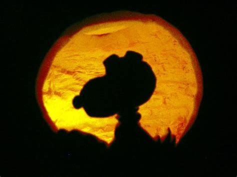 brown pumpkin template give this a try before you carve your o lantern this