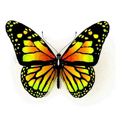 tattoo butterfly yellow yellow butterfly tattoo isolated butterfly of yellow