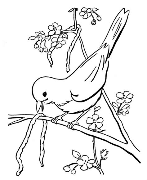 spring scenes coloring page 20 spring early bird