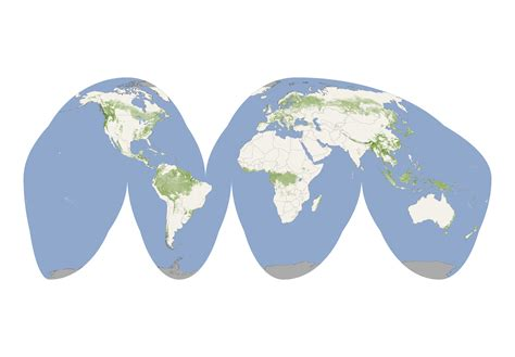 map world map world nasa of its map depicts global forest heights
