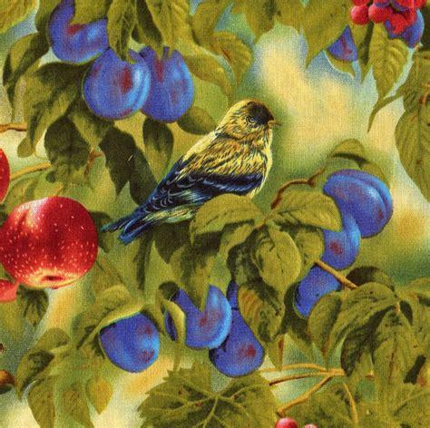 wings garden designer rosemary millette quarter