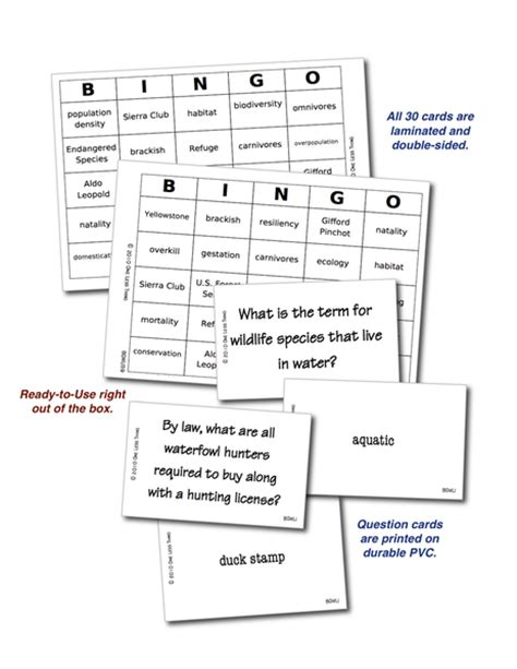 introduction bingo template review activities tagged quot wildlife quot one less thing
