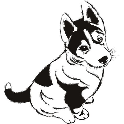 coloring pages of husky dogs baby husky coloring pages